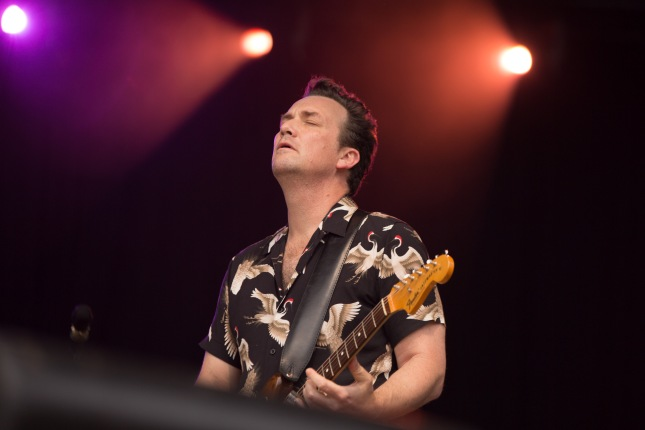 03 marlon williams @ live in the park 16th jan 2019_9